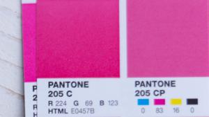 Een foto van de pantone color bridge met de kleur 205C en pantone 205CP