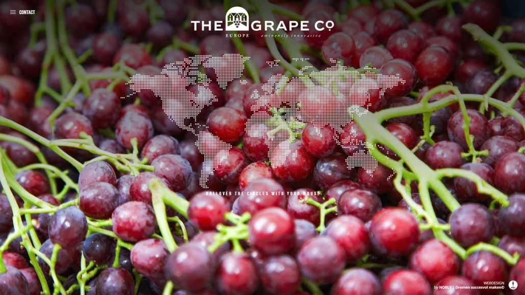 Screenshot website van the Grape Hub gemaakt door NOBLY Authentieke Communicatie & Creatie